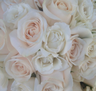 rose bouquet floral meaning